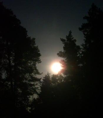 Beltane-Mond